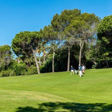 © Robert Palomba Photographe / Mona Lisa, Var (83) Domaine du Golf de l'Estérel